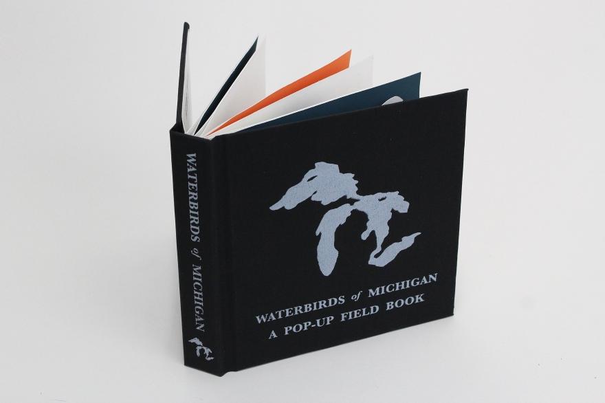 licata_danish_waterbirdsbook4_kilpatrick